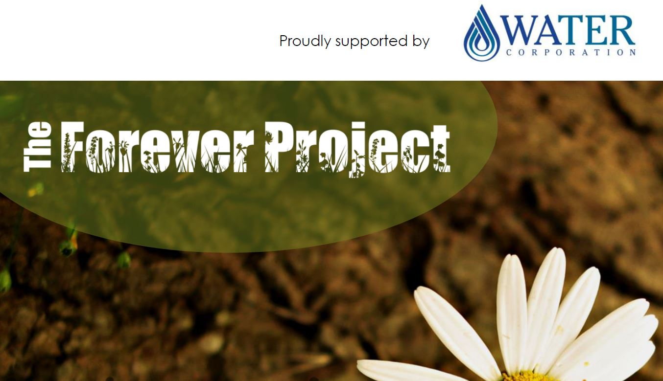forever project
